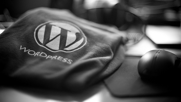 Wordpress Social Media b2b
